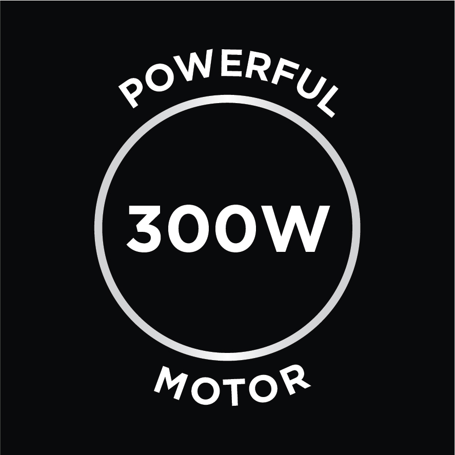 Powerful 300W Motor